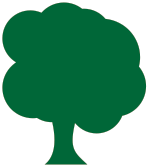 Innovation-Drivers-Tree-Green-Outline